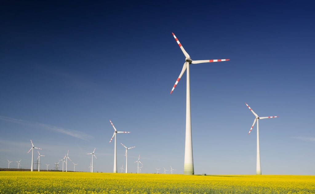 Image of windmills in field