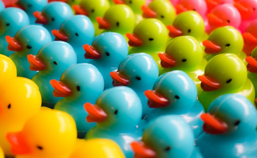 Image of coloured rubber ducks