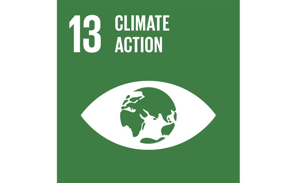 Image of UN goal 13
