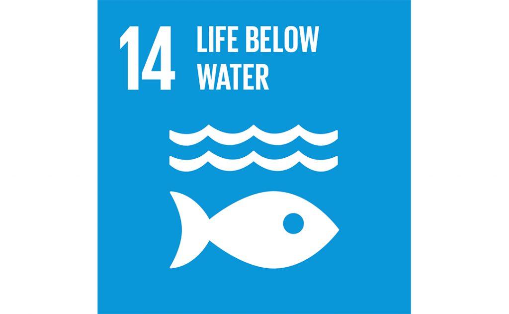 Image of UN goal 14