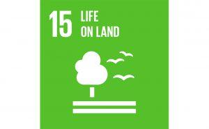 Image of UN goal 15