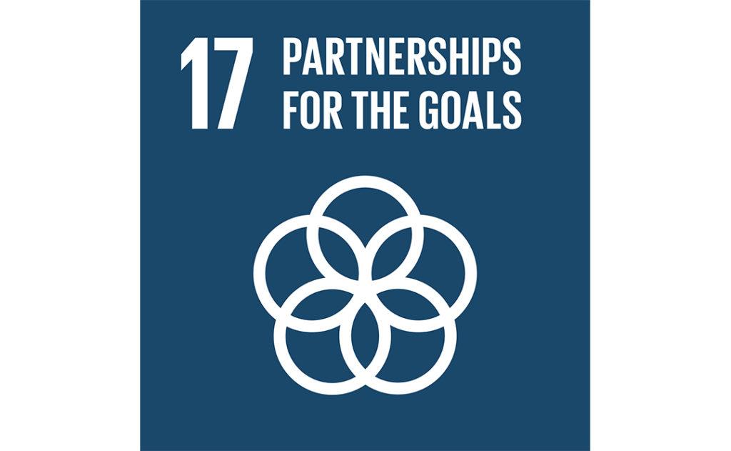 Image of UN goal 17