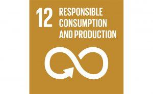 Image of UN goal 12