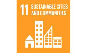 Image of UN goal 11
