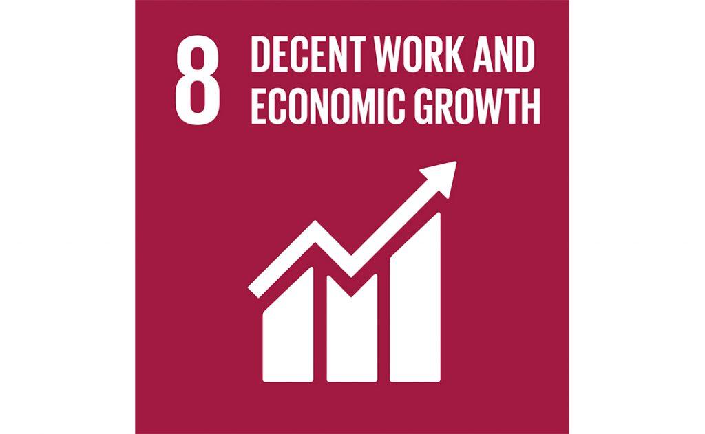 Image of UN goal 8