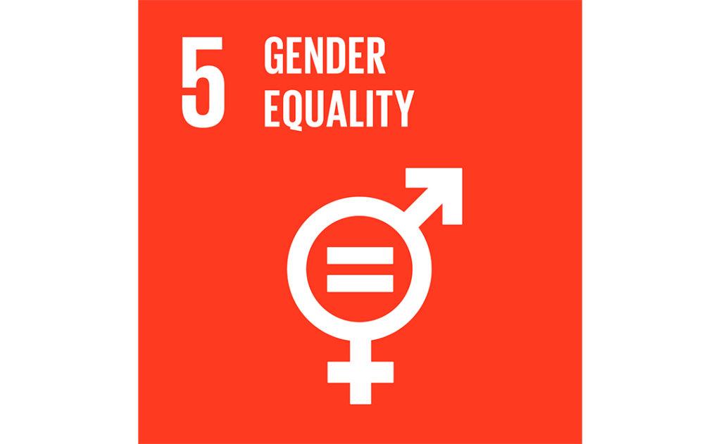 Image of UN goal 5